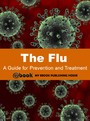 Flu: A Guide for Prevention and Treatment